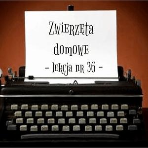 36 Lekcja zwierzęta domowe po rosyjsku
